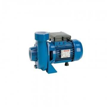 Poza Pompa centrifuga de apa Speroni CBM 100 - 13 mCA